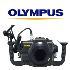 Sea & sea System set up olympus