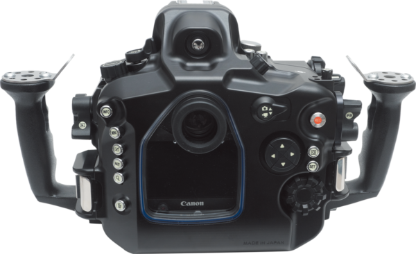 Sea&Sea housing for Canon EOS 5D Mark IV MDX-5D Mark iV back